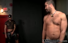 Bear gets mouth spermed by big black cock